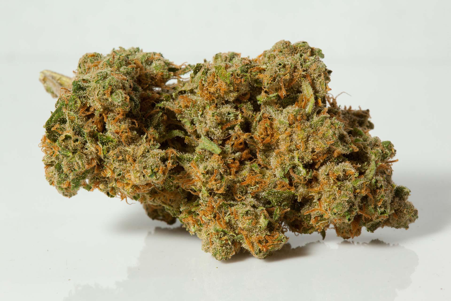 durban-poison-strain-1